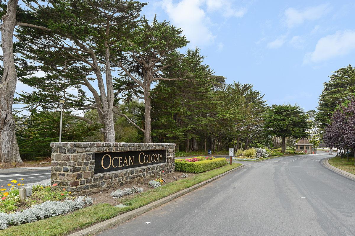 Ocean Colony