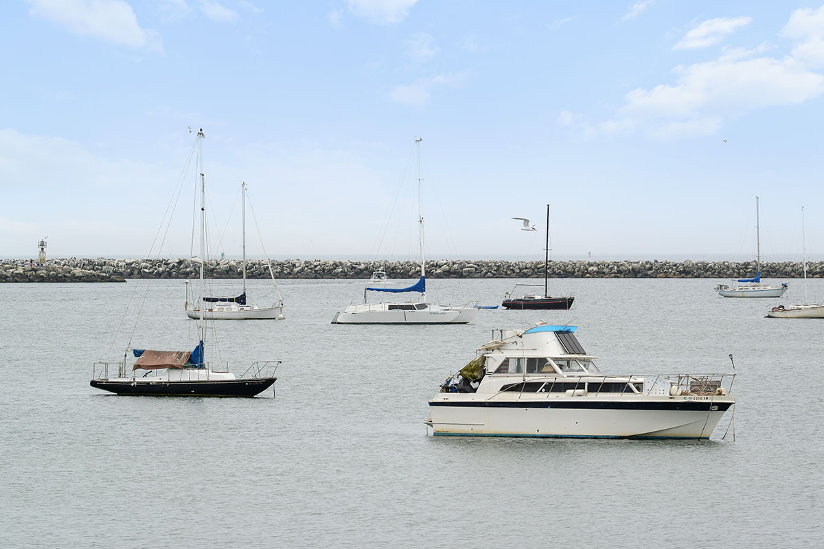 boats in Princeton harbor